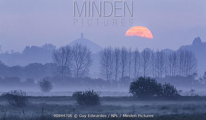 Glastonbury Tor viewed across Somerset Levels, at sunrise. Somerset, England, UK. May 2016.