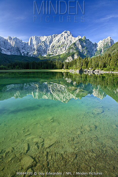 Julian Alps and coniferous forests of Planica valley reflected in lake, stones at bottom of lake in foreground. Zelenci Springs Nature Reserve, Slovenia. July 2007.