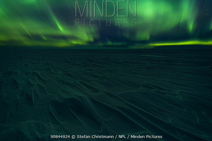 Aurora australis display over the ice, Atka Bay, Antarctica. March. Bookplate.