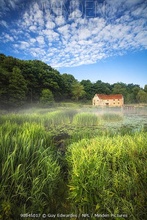 Sturminster Newton Mill, Dorset, England, UK, June.