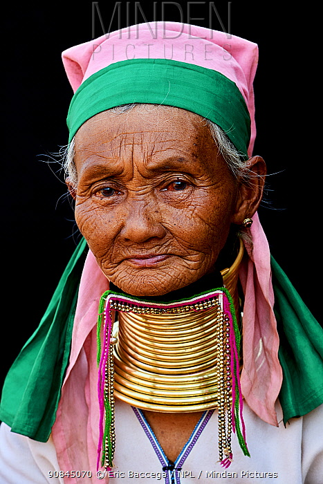 Head portrait of a Kayan Lahwi woman with brass neck coils and traditional clothing. The Long Neck Kayan (also called Padaung in Burmese) are a sub-group of the Karen ethnic people from Burma. They wear brass rings around their neck and lower legs.They are also nicknamed 'giraffe women'. Pan Pet Region, Kayah State, Myanmar April 2019.
