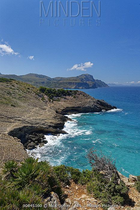 View towards Cap de Ferrutx from coastal footpath near Torre d'Aubarca, Llevant Peninsula Natural Park, near Arta, Mallorca east coast, May 2019.