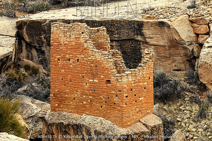 Structure built by ancestral Pueblo people at The Holly Site, Hovenweep National Monument, Utah, USA, March.