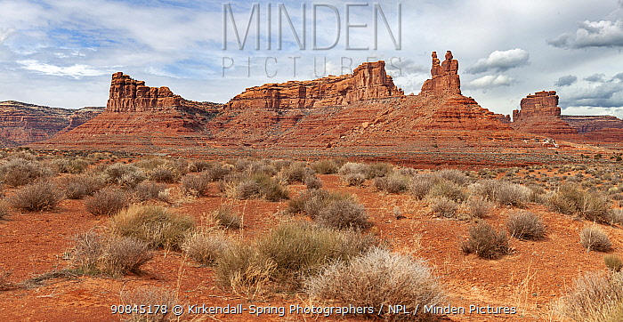 View of The Valley Of The Gods in San Juan County, Utah, USA, March.