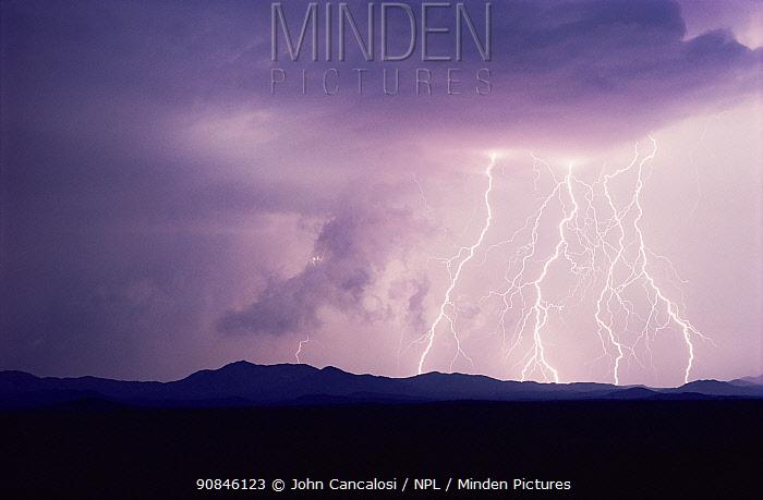 Lightning at night, Tucson, Arizona, USA