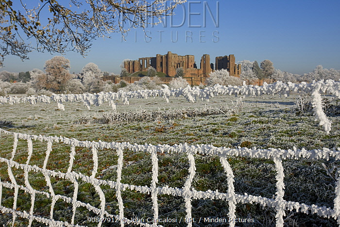 Kenilworth Castle viewed through fence, covered in hoar frost, Warwickshire, England, UK, December 2010