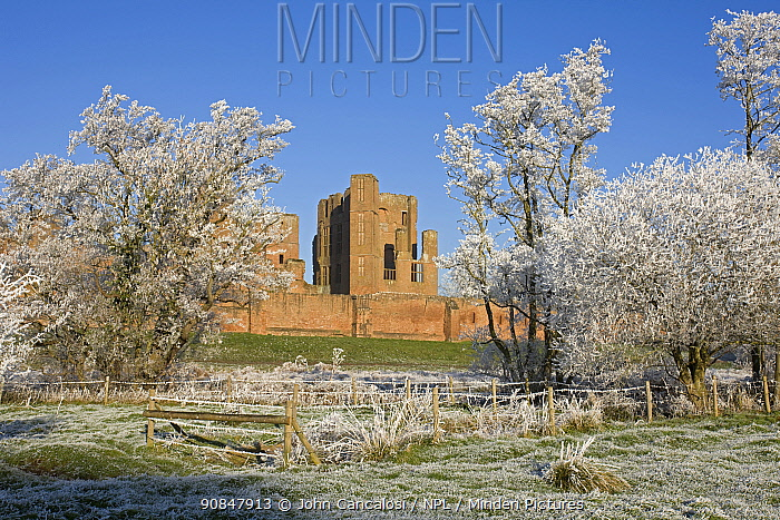 Kenilworth Castle, with hoar frost covering field and trees, Warwickshire, England, UK, December 2010