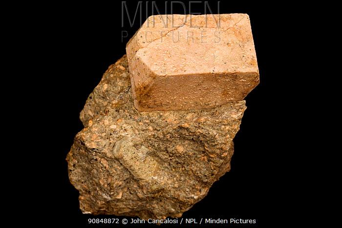 Sanidine, high temperature form of potassium feldspar, K(AlSi3O8), from near Beaverdell, British Columbia, Canada