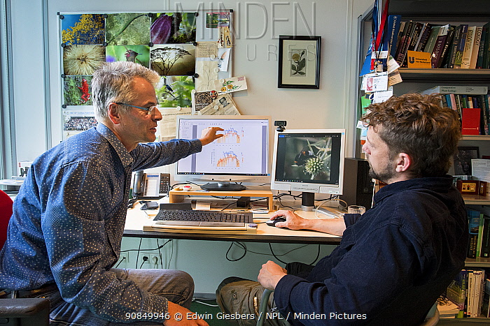 Biologists discussing research in office, lead authors of a paper evidencing a 75 percent drop in flying insect biomass in 27 years. Radboud University, Nijmegen, The Netherlands. 2019.