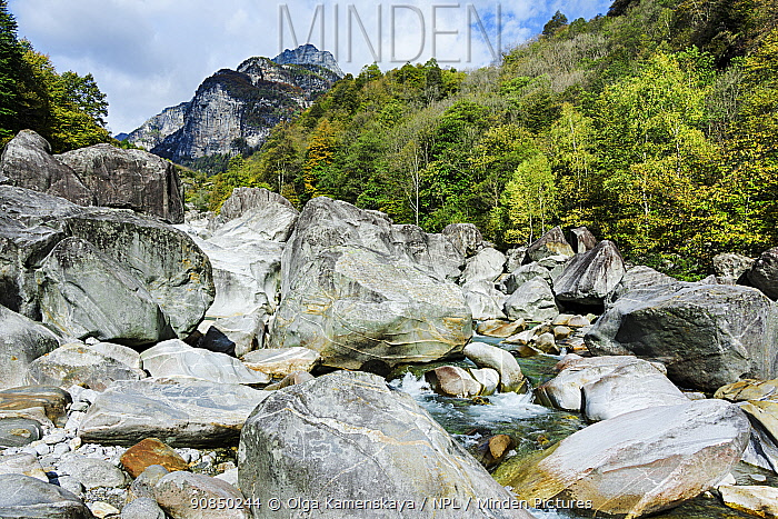 Landscape of the Verzasca River, Switzerland, October.