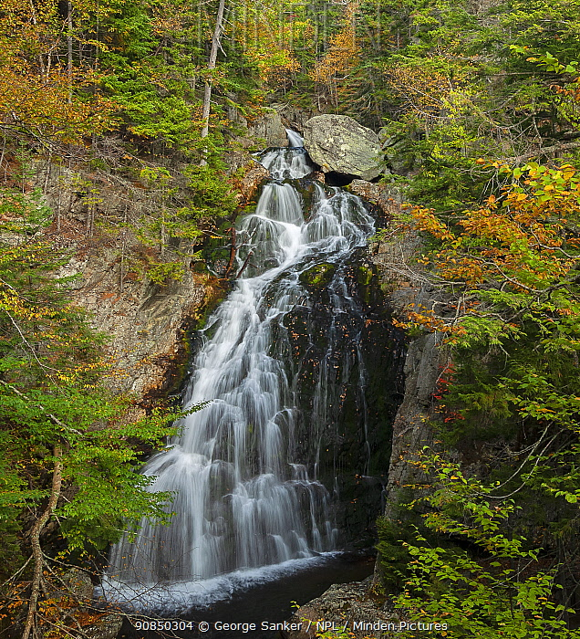 Cascades on the Ellis River, White Mountain National Forest, New Hampshire, USA. October 2007.