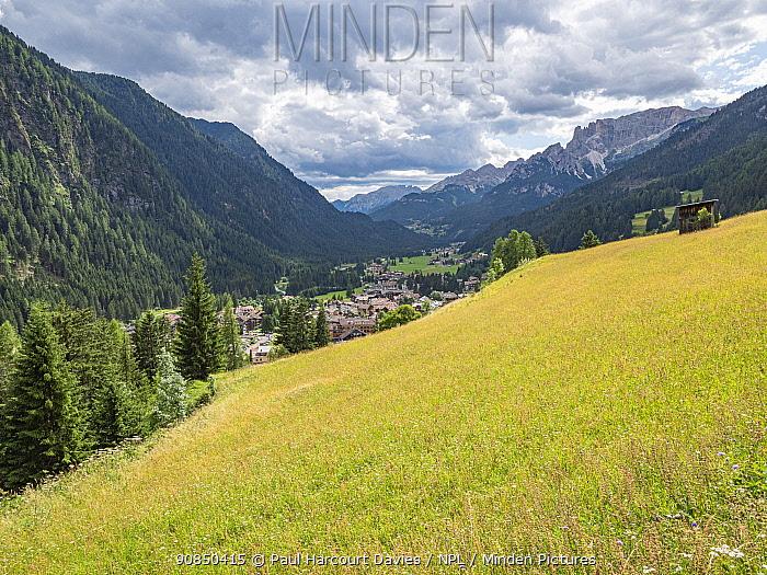 View across meadow in Fassa Valley to Campitello di Fassa. Dolomites, Trentino, Italy. July 2019.