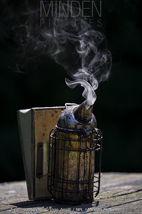 Bee smoker. Important equipment of a beekeeper to calm down Honey bees (Apis Mellifera), Germany