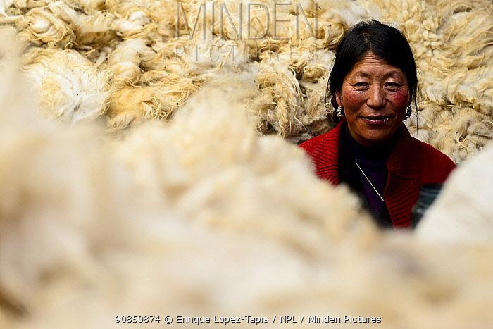 Woman selling Yak (Bos grunniens) wool at Tibetan market, portrait. Litang, Garze Tibetan Autonomous Prefecture, Sichuan, China. 2016.