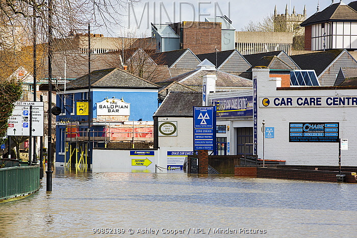 Flood waters from River Severn in road with garage and pub near town centre. After Storm Ciara and Storm Dennis, the wettest February recorded in the UK. Shrewsbury, Shropshire, England, UK. February 2020.