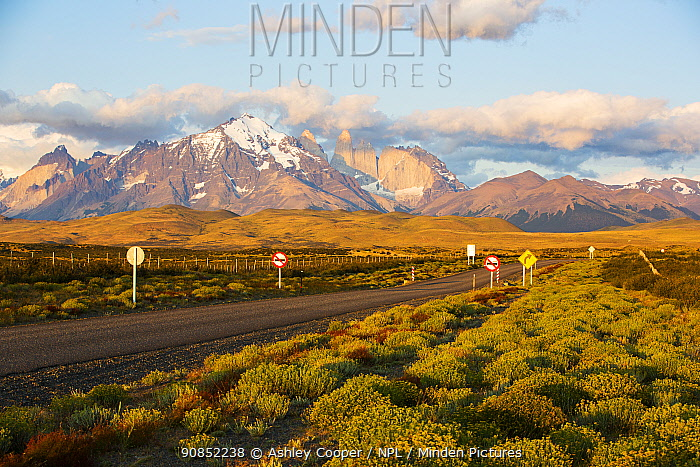 Road through Torres del Paine National Park in morning light, mountains in background. Patagonia, Chile. January 2020.