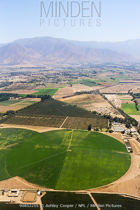 Irrigated farmland with mountains beyond, aerial view. Near Santiago, Chile. January 2020.