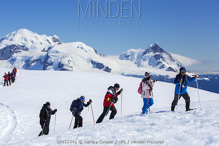Tourists from expedition cruise ship snow shoeing up slope, mountains and Southern Ocean in background. Orne Harbour, Danco Coast, Graham Land, Antarctica. December 2019.