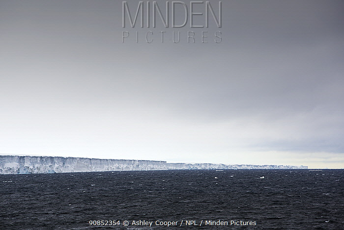 The world's largest iceberg A86 in Weddell Sea. A86 broke off from Larson C ice shelf in 2017, climate change is leading to the collapse of ice shelves. Weddell Sea, Antarctica. December 2019.
