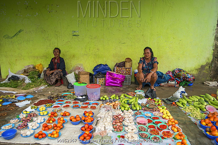 Stallholders at markets stall selling fruits and vegetables including onions, garlic, chili peppers, ginger and lemons. Lospalos, East Timor. 2018.