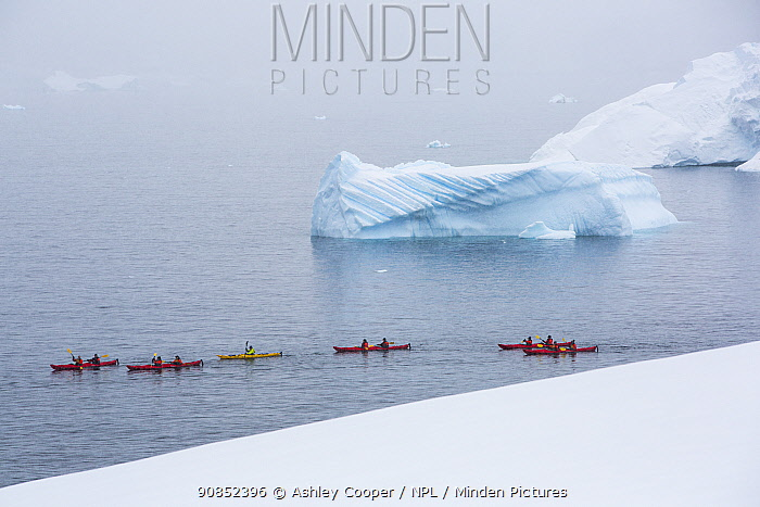 Tourists from an expedition cruise ship sea kayaking between icebergs and Portal Point. Reclus Peninsula, Antarctica. December 2019.