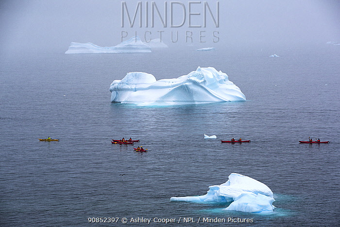 Tourists from an expedition cruise ship sea kayaking past icebergs. Portal Point, Reclus Peninsula, Antarctica. December 2019.