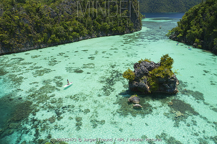 Lagoon between forested karst islands, tourists paddleboarding and canoeing, aerial view. Raja Ampat Islands, West Pappua, Indonesia. 2018.