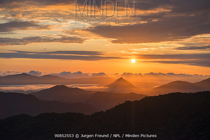 Walsh's Pyramid and the Gillies Range in fog, silhouetted at sunrise. Far North Queensland, Australia. 2017.