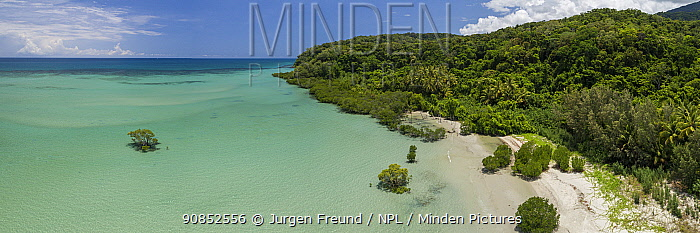 Coastline with mangrove forest on Pacific Ocean, aerial view. Far North Queensland, Australia. 2017.