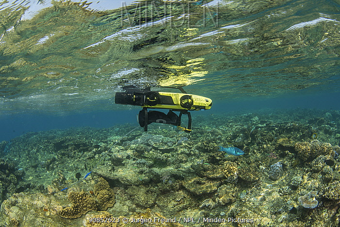 LavalBot, a semi-autonomous robot designed by Queensland University of Technology used to deliver reared Coral larvae as larval clouds onto targeted damaged coral reefs. Coral IVF project, Great Barrier Reef, Queensland, Australia. 2019.