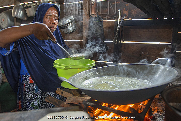 Woman cooking sago dish over open fire, a starch staple most commonly extracted from pith of Sago palm (Metroxylon sagu). West Papua, Indonesia. 2018.