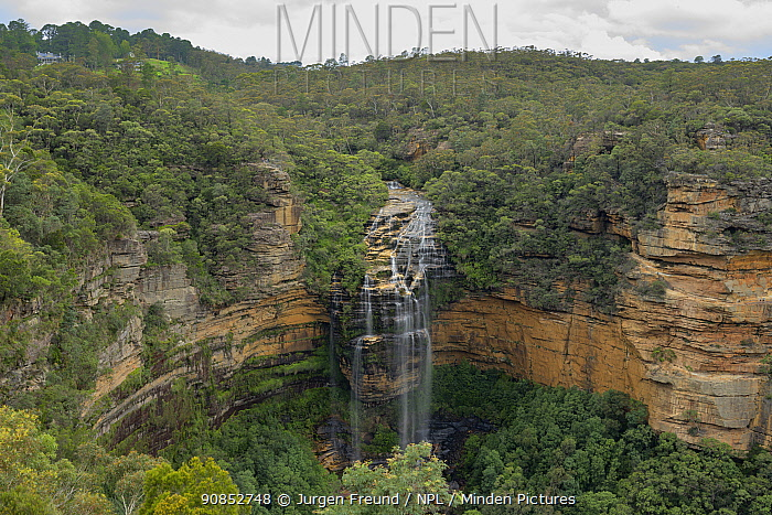 Wentworth Falls and surrounding forest. Blue Mountains National Park, New South Wales, Australia. 2020.