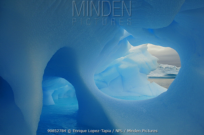 Blue ice of iceberg in Wilhelmina Bay, Gerlache Strait, Antarctic Peninsula, Antarctica. March 2010. Commended in BioPhoto competition 2020.