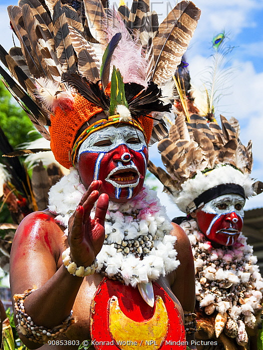 Papuan people in traditional dress with headdresses and necklaces. At Sing-sing gathering where traditional cultures including dance and music are shared. Morobe Show, Lae, Papua New Guinea. 2019.