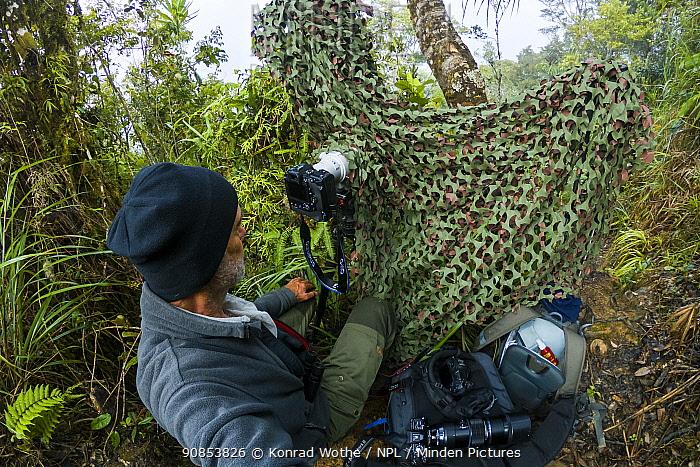 Photographer Konrad Wothe taking photographs in rainforest through temporary hide. Western Highlands, Papua New Guinea. 2019.
