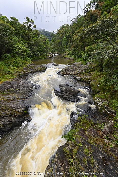 River in tropical rainforest. Ranomafana National Park, Madagascar. 2019.
