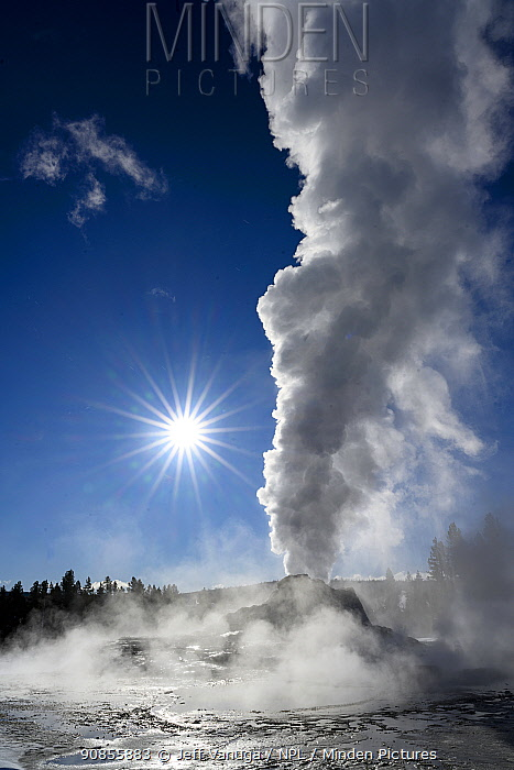Castle Geyser eruption in the Upper Geyser Basin of Yellowstone National Park. Wyoming, USA. January.