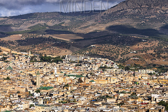 A view of Fes / Fez from outside the city. Morocco.