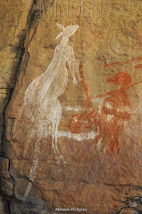Aboriginal rock art depicting a kangaroo and human figure. Kakadu National Park, Northern Territory, Australia.