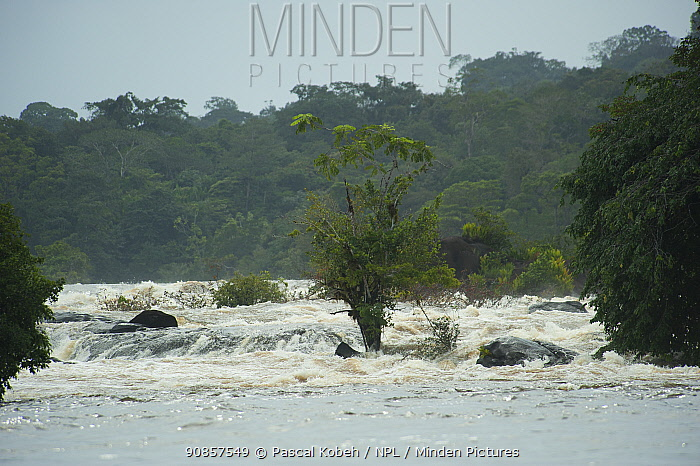 Waterfalls on Oyapock River. French Guiana. 2015.