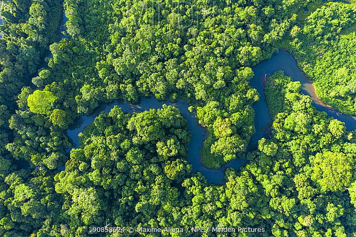 Aerial view of Suaq balimbing, Gunung Leuser National Park, Sumatra.