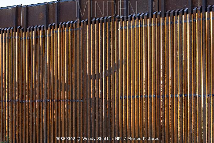 Silhouette of Saguaro cactus (Carnegiea gigantea) through border wall from Organ Pipe Cactus National Monument, Arizona, USA. March.