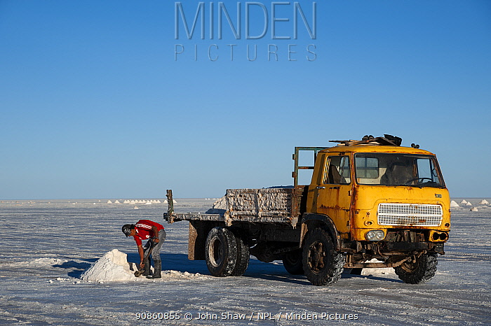 Workman collecting salt for processing, on the Salar de Uyuni, Bolivia. The Salar is the world's largest salt flat, at over 10500 square kilometers. March.