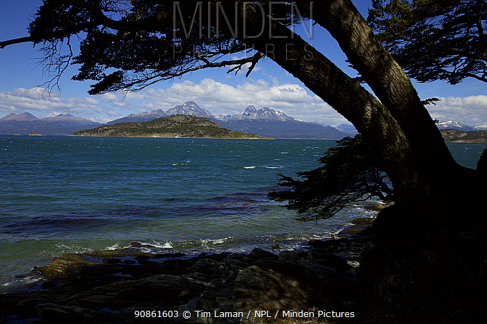 View across the Beagle Channel from Tierra del Fuego, South America, February 2011.