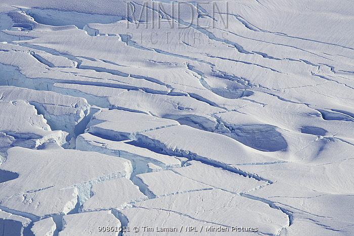 Pattern of crevasses in a glacier surface, Neko Harbor, Andvord Bay, Antarctica, February 2011.