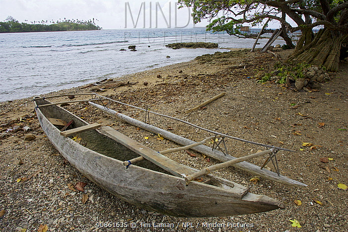 Traditional canoes on the beach. Papua New Guinea.