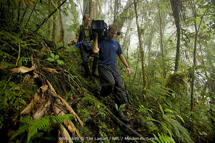Eric Liner and Ian Fein hiking through the misty montane forest of the Arfak Mountains, New Guinea. September 2009.