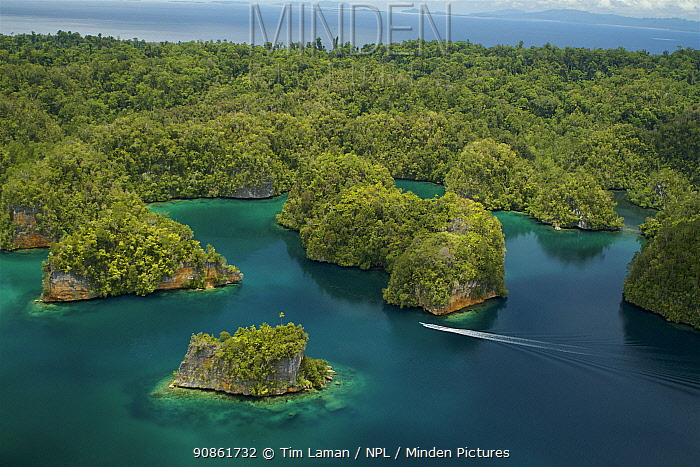Islets in Kabui Bay near the entrance to the 'Passage'. Waigeo Island in background, West Papua, New Guinea.