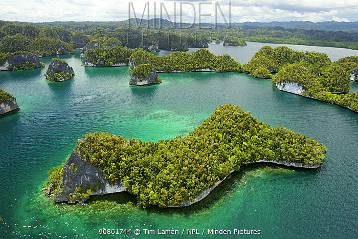 Aerial view of Limestone islands on the West side of Kabui Bay. Waigeo Island at the top. Raja Ampat Islands, West Papua, Indonesia.