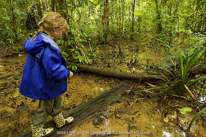 Jessica Laman hiking in the rain forest, Gunung Palung National Park, Borneo. August 2010 Model released.
